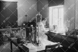 Kasvitieteen laitosta Phoenixissa vuonna 1949.