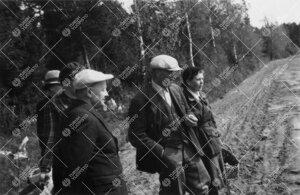 Perunannostotalkoot Tuorlassa vuonna 1946. Talkooväkeä pellon  pientareella.