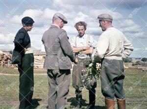 Kasvitieteilijät Muoniossa kesällä 1946.