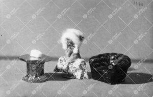 """""""Japanilainen miniatyyriasetelma"""". Kirjaston valokuva-albumiin  liimattu kuva vuodelta 1930."""
