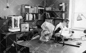 Kasvitieteen assistentti Yrjö Mäkinen työhuoneessa Phoenixissa  1950-luvun jälkipuolella.
