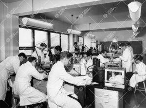 Työskentelyä farmakologian laitoksen kurssisalissa  kevätlukukaudella 1957.
