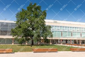 Feeniks kirjasto kesällä 2020.