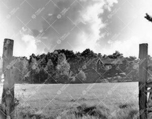 Lohmia kesällä 1964.