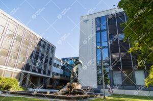 Turun kauppakorkeakoulu