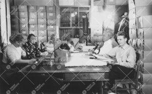 Kasvitieteen kurssi Phoenixissa 1950-luvulla.
