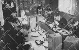 Kasvitieteen opiskelijoita työssään laitoksen tiloissa vuonna  1950.