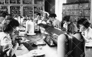 Kasvitieteen kurssi Phoenixissa 1950-luvun jälkipuolella.