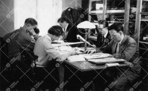 Kasvitieteen kurssi Phoenixissa 1950-luvulla. Kasvien  tunnistamista.