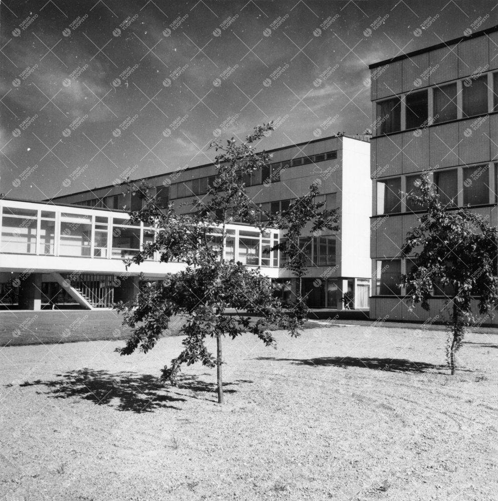 Kahvionivel, Luonnontieteidentalo I ja fysiikan ja kemian  laitosrakennuksen eteläpäätyä 1950- j