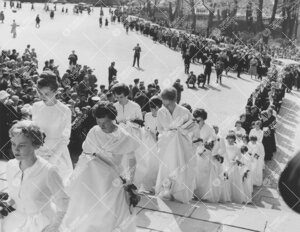 Promootio 27. toukokuuta 1960. Seppeleensitojattaret ja tohtorien  naiset nousemassa tuomiokirkkoon.