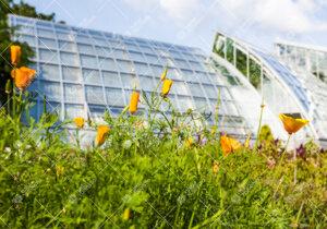 Ruissalon kasvitieteellinen puutarha kesällä 2012