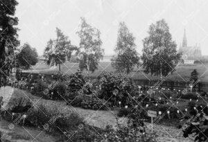 Yliopiston kasvitieteellinen puutarha Iso-Heikkilässä kesällä  1942. Taustalla oikealla Mikaelin